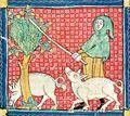 14th Century Hood