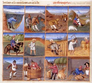 The Medieval Year